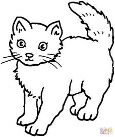 free coloring pages of cats cat 25 coloring page free printable coloring pages