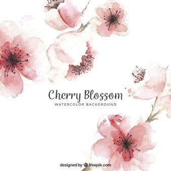 pink wallpaper melbourne floral background vectors photos and psd files free