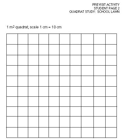 how small is 281 square meter quadrat sling worksheet the best and most comprehensive worksheets