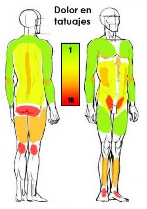 tattoo pain chart female chart for search