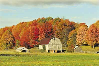 city and color tour fall color tours traverse city and northern michigan