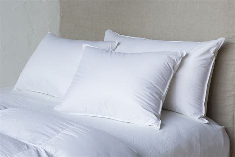 Pillow Sham Inserts by Pillow Inserts For Shams By Notte