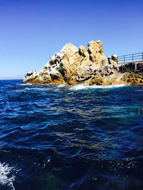 glass bottom boat avalon ca lover s cove marine preserve yelp
