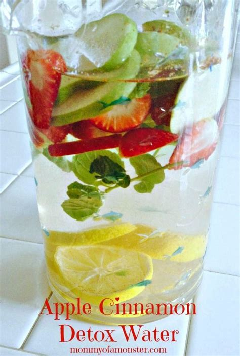 Flavored Detox Water by The 407 Best Images About Healthy Beverage Recipes On