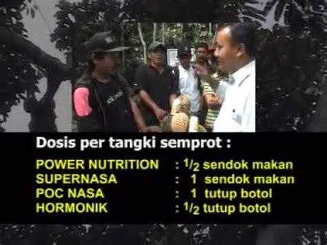 Jual Kolam Terpal Magelang budidaya lele meningkat dengan produk nasa magelang doovi