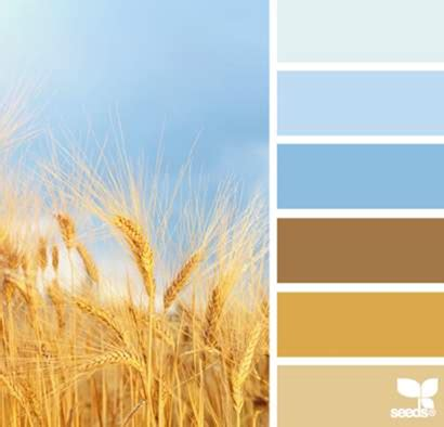 30 memorial day color palettes for graphic design