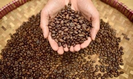 deretan kopi terbaik di coffe festival 2014