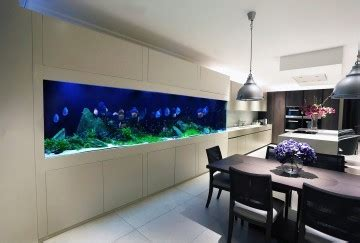 Island Kitchen Plans by Aquarium Designs In Wall Aquariums Free Standing Tanks