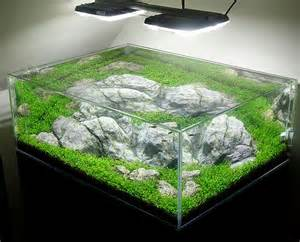 glass aquarium as complement of the previous article arylic vs glass