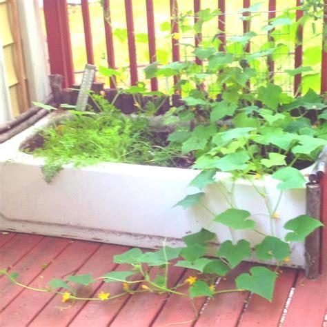 Bathtub Planter by