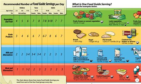 the food guide to healthy grade 1 3 health libguides at