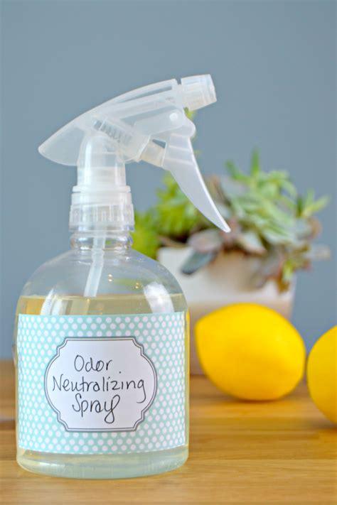 homemade odor neutralizer spray dog odor spray diy