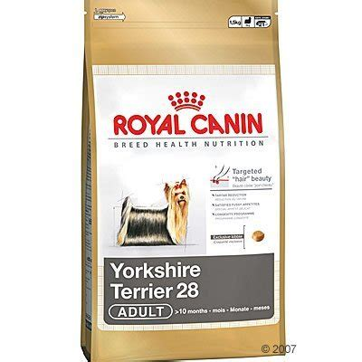royal canin for yorkies royal canin terrier food swell pets