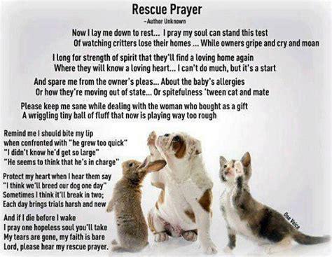 rescue quotes inspirational quotes about rescue quotesgram
