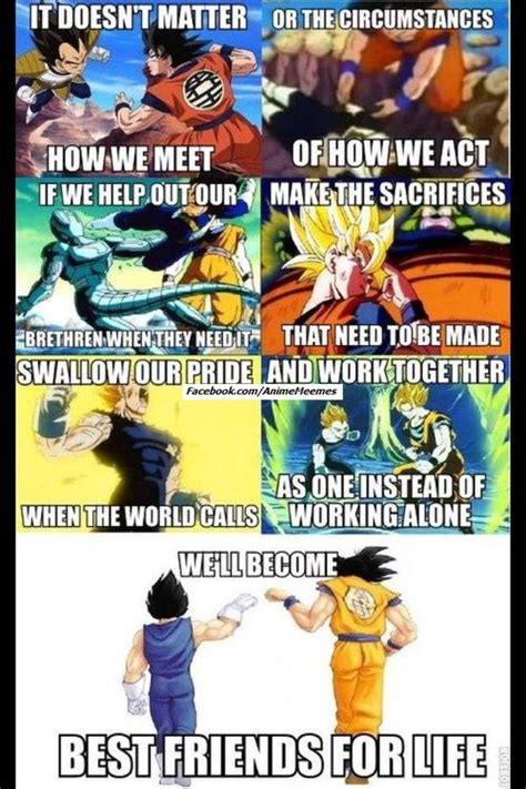 Dragonball Z Meme - a powerful meme picture highlighting the relationship