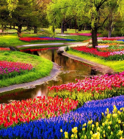 what is spring 14 reasons to visit the netherlands in spring
