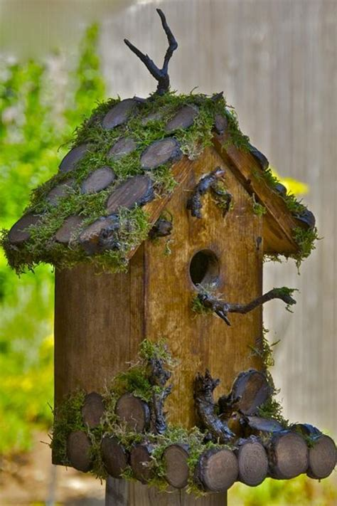 how to make bird houses building bird house birds house dog breeds picture