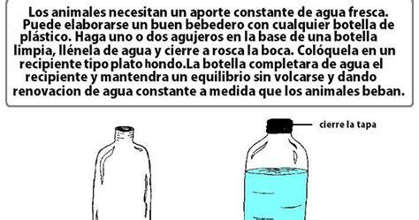 botellas de plastico construccion y manualidades hazlo tu mismo bebedero para los animales de la calle construccion y