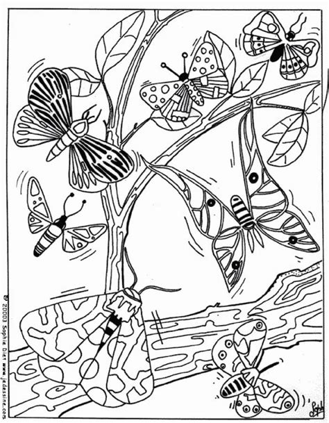 black and white coloring pages of butterflies butterflies coloring pages hellokids com