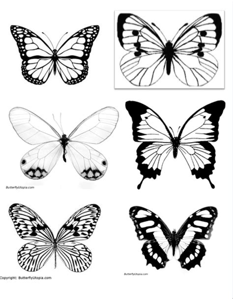 Can See Who Search For Them On Diy Faux Butterfly Collection
