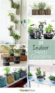 Indoor Herb Gardens by Diy Indoor Herb Gardens Indoor Herbs Herbs Garden And