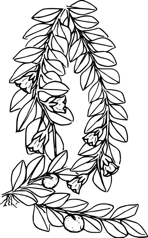 Free Wintergreen Leaf Cliparts, Download Free Clip Art