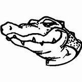 Alligator Mouth Open Drawing | 236 x 236 jpeg 9kB