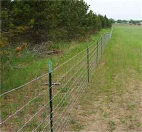 barbed wire fence barbed wire fence pictures and ideas