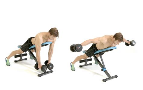 incline bench dumbbell fly the gallery for gt reverse fly on incline bench