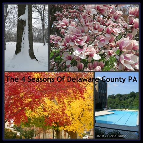 houses for sale in delaware county pa delaware county pennsylvania real estate blog pennsylvania elwyn