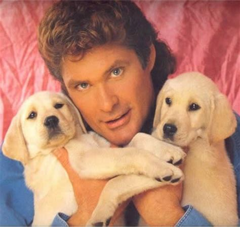 david hasselhoff puppies david hasselhoff 2005 calendar the adventures of accordion in the 21st century