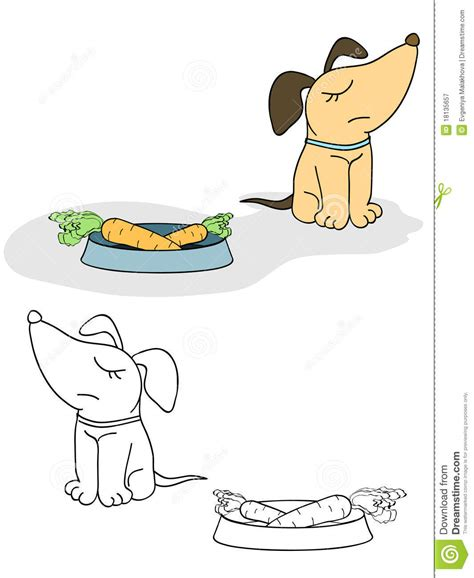 dogs and carrots and carrot royalty free stock photography image 18135657