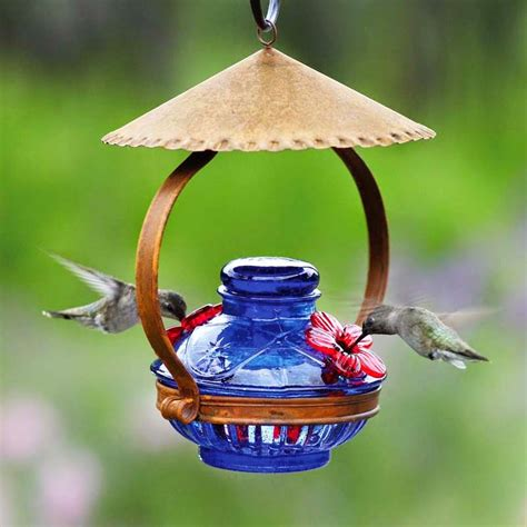 what is the mixture for hummingbird feeders home improvement