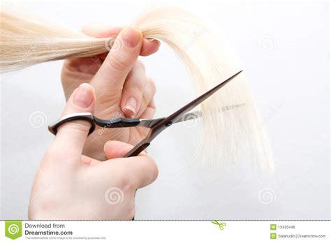 woman scissor cut hair styles blonde haircut scissors royalty free stock image image