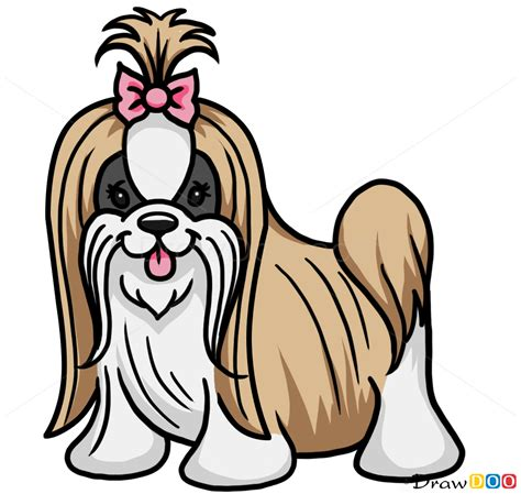 how to draw a shih tzu puppy step by step how to draw a puppy dogs and puppies easy drawing