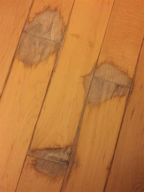 Repair Wood Floor Repair How Can I Cover Up Wood Floor Stain Spill Damage Home Improvement Stack Exchange