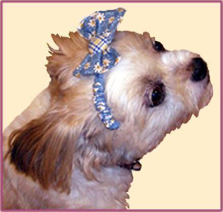 buttons bows dog headband    pet clothes