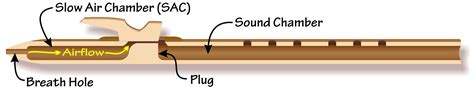 how to hold a flute diagram faq for the american flute