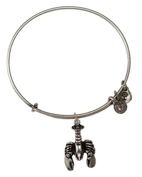 alex and ani bracelet alex and ani lobster expandable wire bracelet in silver
