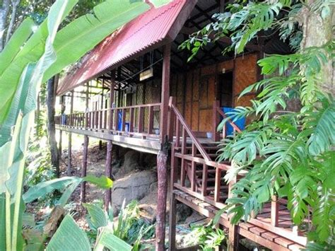similan island bungalows similan islands national park bungalows thailand phang