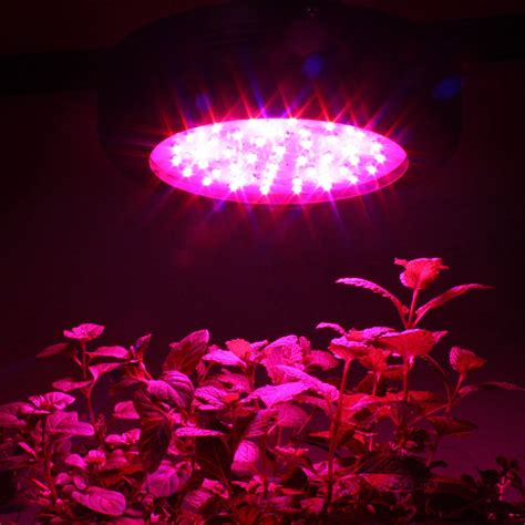 Led Lighting Kind Led Grow Light Reviews Lg Led Grow Led Grow Light Bulbs Review