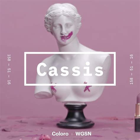 what color is cassis coloro x wgsn cassis ss2020 in 2019 color trends