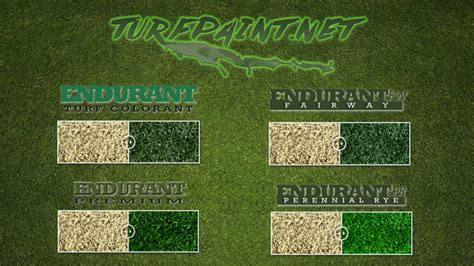 types of turfgrass commonpence co