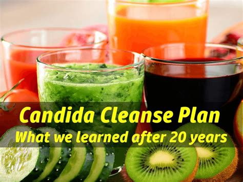 Candida Diet Detox Side Effects by 45 Best Physical Help Images On Candida