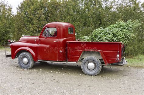 red christmas vintage pick ups for sale vintage truck carrying a tree in the be stock image image 82405631