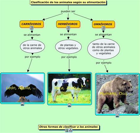 imagenes de animales por su alimentacion animales seg 250 n alimentaci 243 n