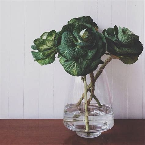 ornamental cabbage floral arrangement our favorite things pinterest