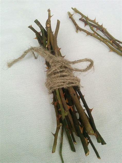 Decorative Stems For Vases Dried Rose Stems Sharp Thorns Branches | dried rose stems sharp thorns branches dried flowers