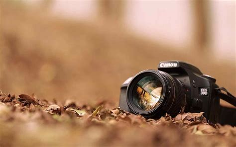 photographer with camera wallpaper hd photography cameras wallpaper siudy net
