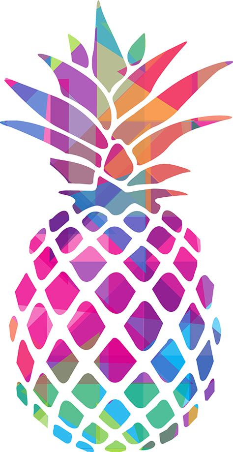 library  abstract pineapple black  white  png